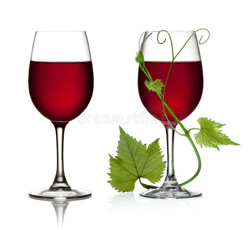 Glas Rotwein- und Traubenblätter lizenzfreie stockbilder
