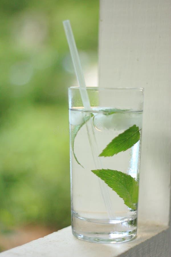 Glas Schmelzwasser mit frischen tadellosen Blättern 2 lizenzfreies stockbild