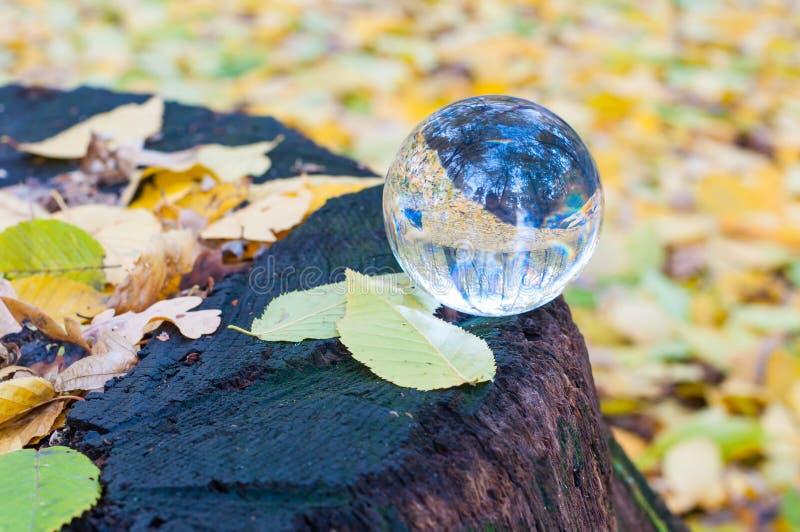 Glas transparante bal met gele de herfstbladeren stock foto