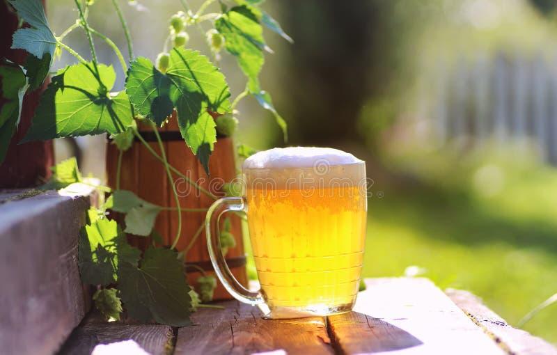 Download Glas Van Aard Van De Bier De Houten Hop Stock Foto - Afbeelding bestaande uit bier, koude: 107707452