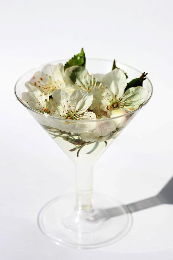 Glas van de lentebloemen stock fotografie
