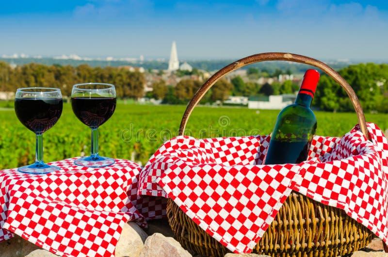 Glas van rode wijnstok, Bourgondië, Frankrijk royalty-vrije stock foto's