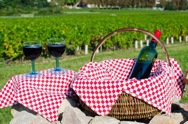 Glas van rode wijnstok, Bourgondië, Frankrijk stock foto
