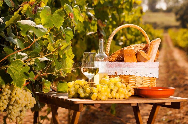 Glas van witte wijn rijpe druiven en picknickmand op lijst in wijngaard royalty-vrije stock foto