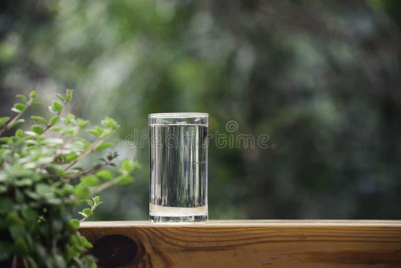 Glas Wasser eingesetzt auf Tabelle in den Naturhintergrund stockfotografie