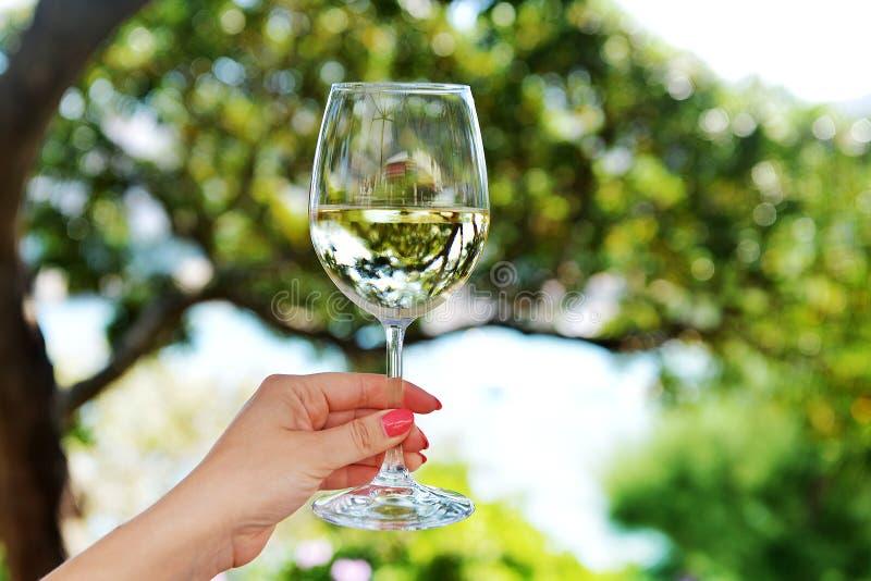 Glas Wein lizenzfreie stockfotografie