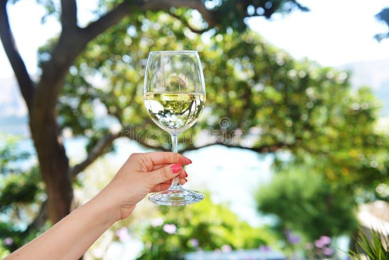 Glas Wein stockfotografie