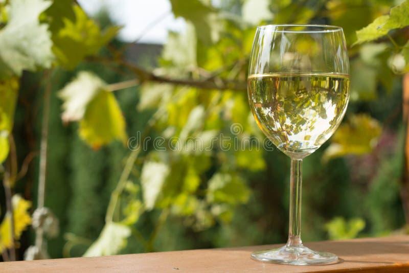 glas wein im garten stockbild bild von paare berg herbst 33965769. Black Bedroom Furniture Sets. Home Design Ideas
