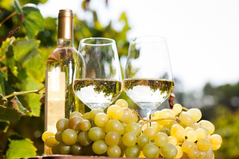 Glas Wit wijn rijp druiven en brood op lijst in wijngaard royalty-vrije stock afbeelding