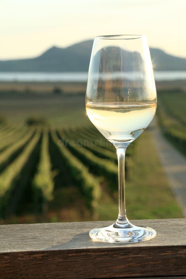 Glas Witte Wijn royalty-vrije stock afbeeldingen