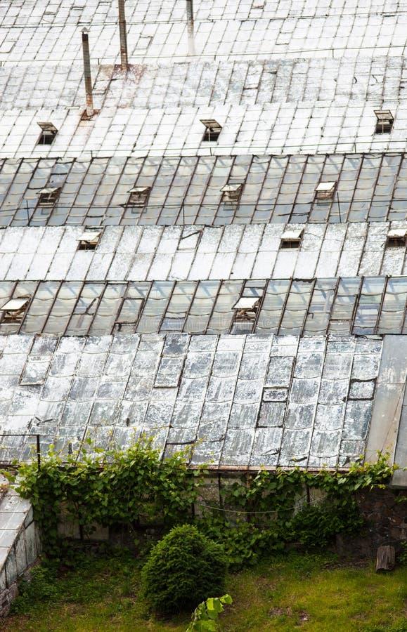 Glasdächer der alten Gewächshäuser stockfotos