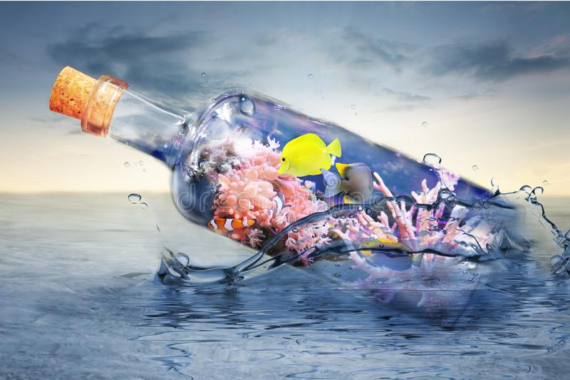 Glasflasche mit Meeresflora und -fauna lizenzfreies stockbild