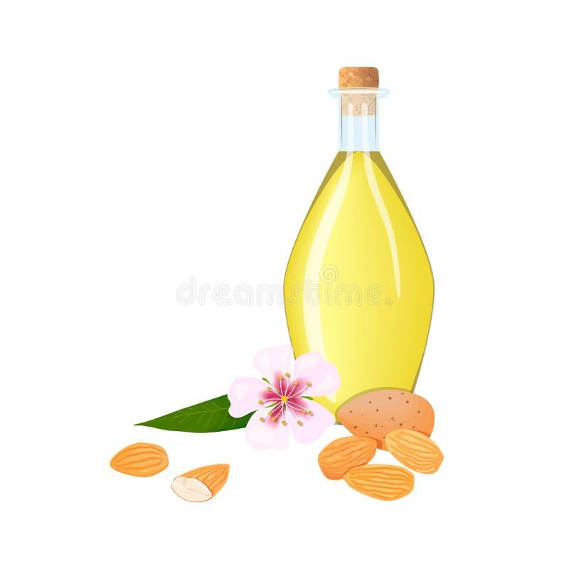 Glasflaska med mandelolja, muttrar, sidor och rosa blommor, kronblad Utrymme f?r kortmallkopia Oilplant f?r att laga mat, sk?nhet royaltyfri illustrationer