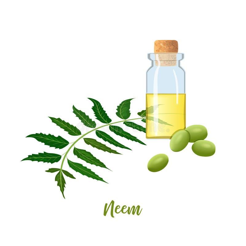 Glasfles met cor, Neem-olie, bladtak, bloemen en peulen Ayurvedakruid flesje Oilplant voor geneeskunde, schoonheidsmiddelen royalty-vrije illustratie