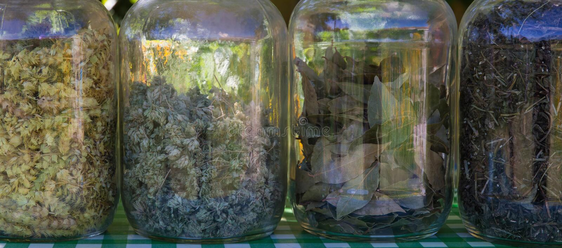 Glasgefäße mit Kräutern für das Kochen stockbild
