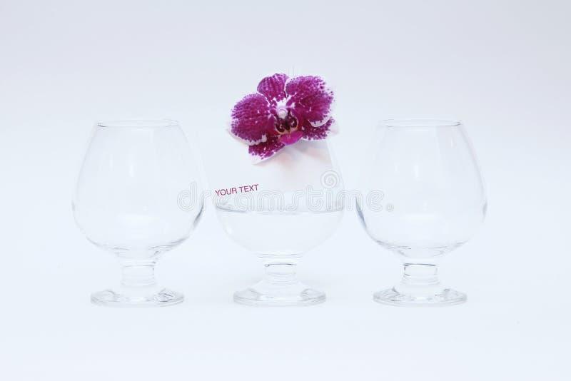 Glasglazen en orchidee stock afbeeldingen