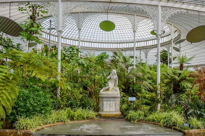 Glasgow Botanic Gardens, Scotland stock photography