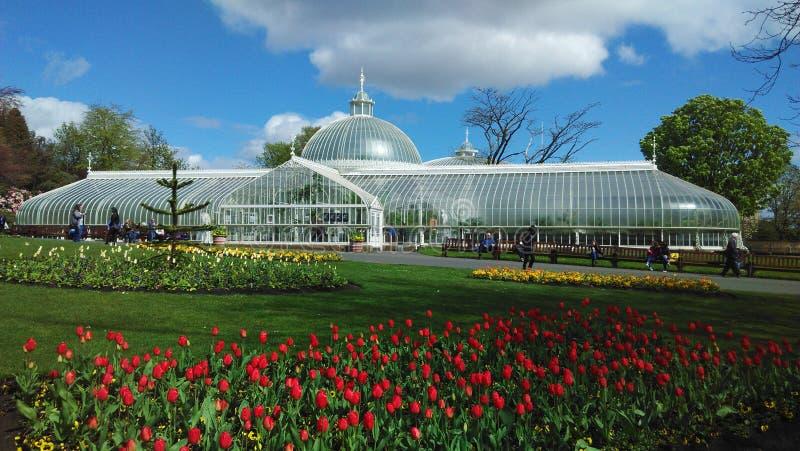Glasgow botaniczny zdjęcie stock