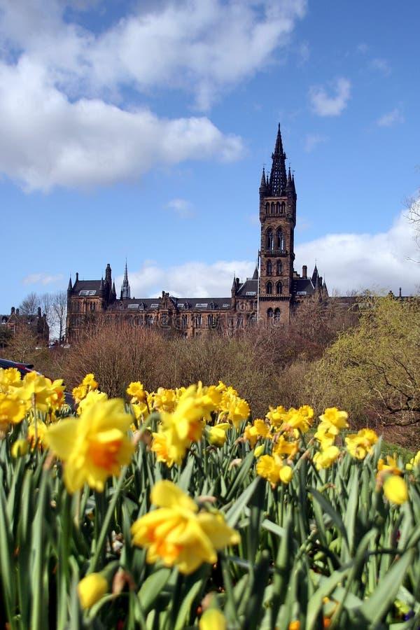 Glasgow, die Universität im Frühjahr stockfotografie