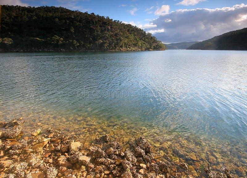 Glashelder rivierwater stock fotografie