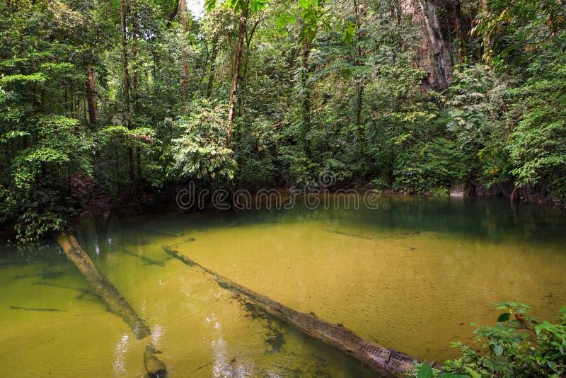 Glashelder water in rivier royalty-vrije stock afbeeldingen