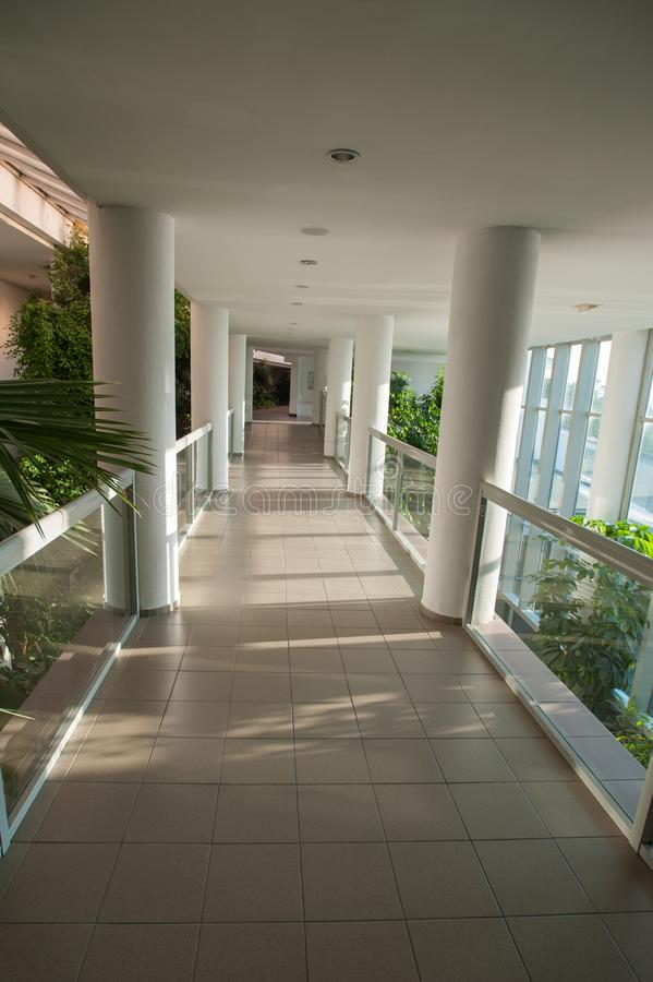 Glasig-glänzender Korridor, Durchgang durch das Gewächshaus, sonniger Korridor stockbilder