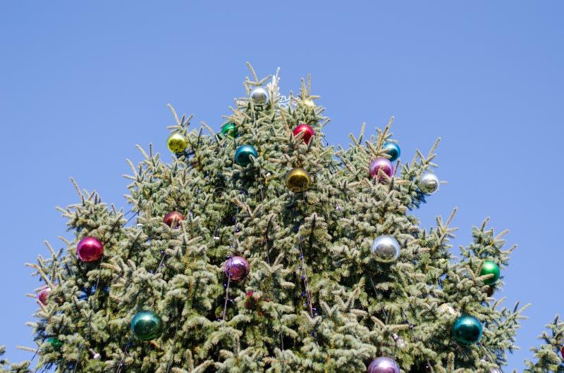 Glasiger Ball des Weihnachtsbaums auf Hintergrund des blauen Himmels lizenzfreie stockfotografie