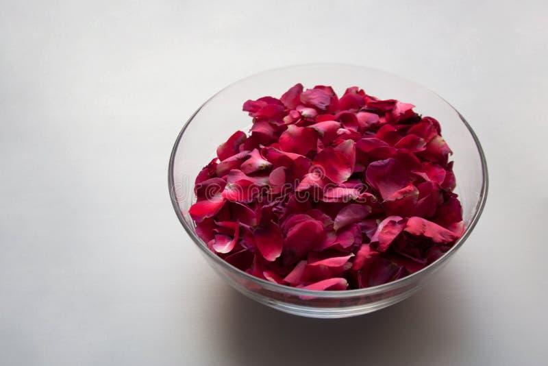 Glaskom met purpere rode bloembloemblaadjes stock afbeeldingen