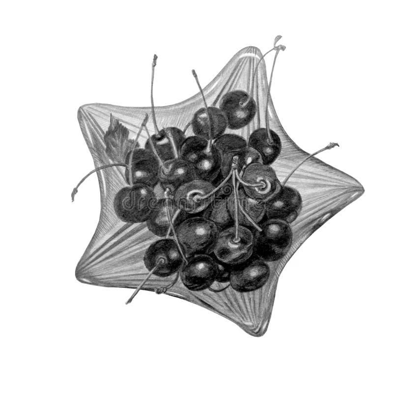 Glaskom met zoete die kers op wit wordt geïsoleerd Met de hand getrokken met grafietpotlood royalty-vrije stock afbeelding