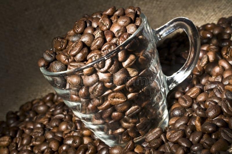 Glaskop met koffiebonen stock afbeeldingen