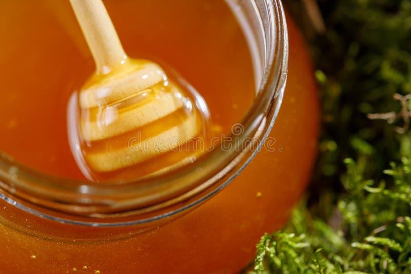 Glaskruik met geurige op smaak gebrachte honing status in het mos royalty-vrije stock foto's