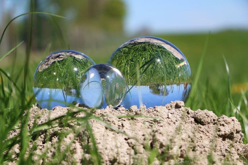 Glaskugeln im Garten stockfoto