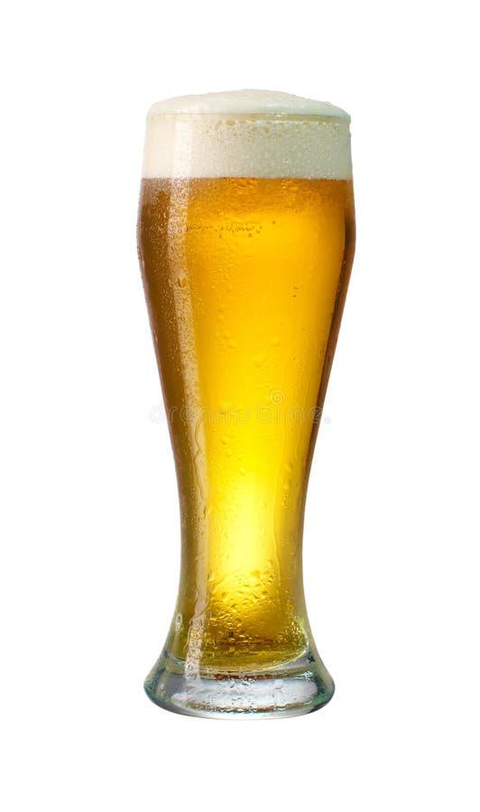 Glasog Lager-Bier stockfoto
