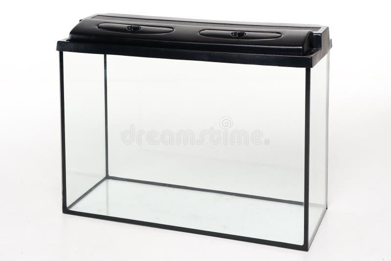 Glass akvarium med en plast- räkning på en vit bakgrund arkivfoto