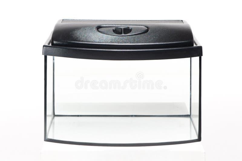 Glass akvarium med en plast- räkning på en vit bakgrund royaltyfri foto
