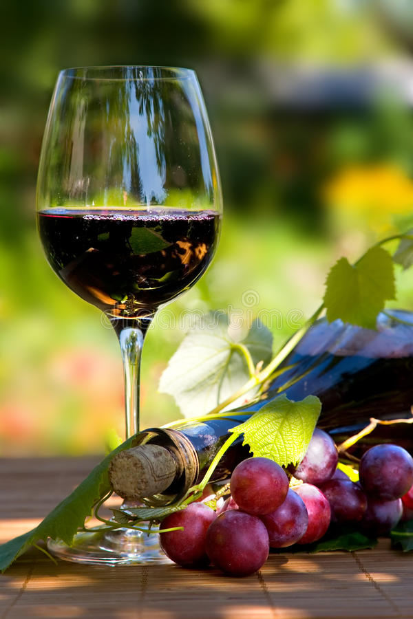 Free Glass And Bottle Of Red Wine Stock Image - 10633181