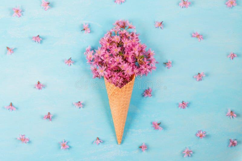 Glass av körsbärsröda blommor för rosa blomning i dillandekotte på pastellfärgad kulör blå bakgrund med knoppar Lekmanna- l?genhe arkivfoto