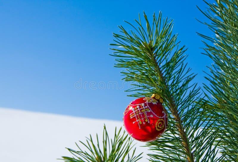 Download Glass Ball On Christmas Tree Stock Image - Image: 27263251