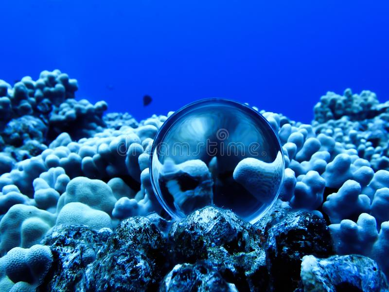 Coral Reef Underwater with Glass or Crystal Ball royalty free stock photography