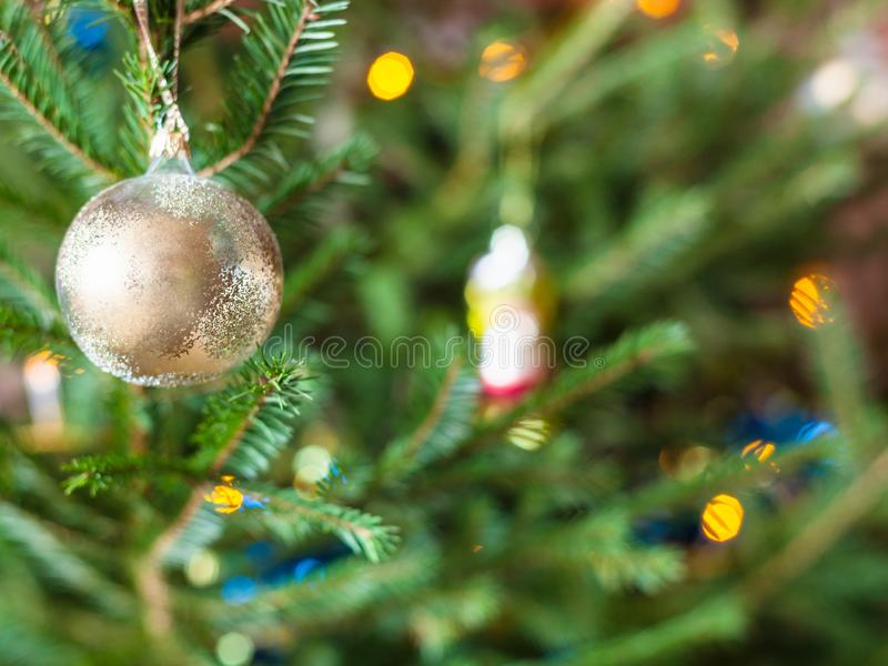 Glass baubles on twigs of live Christmas Tree stock image