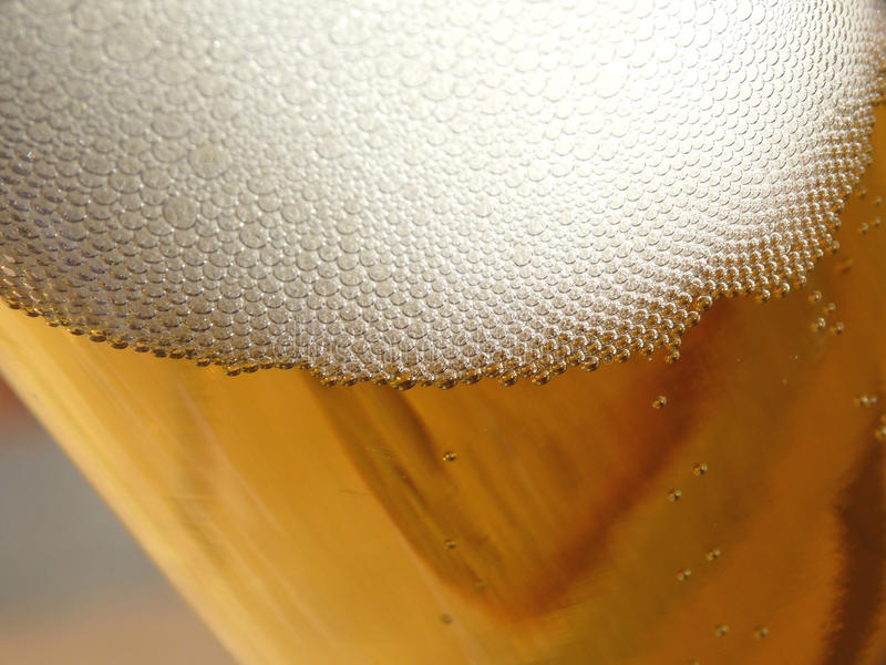 Download Glass of beer stock image. Image of container, glass - 14688273
