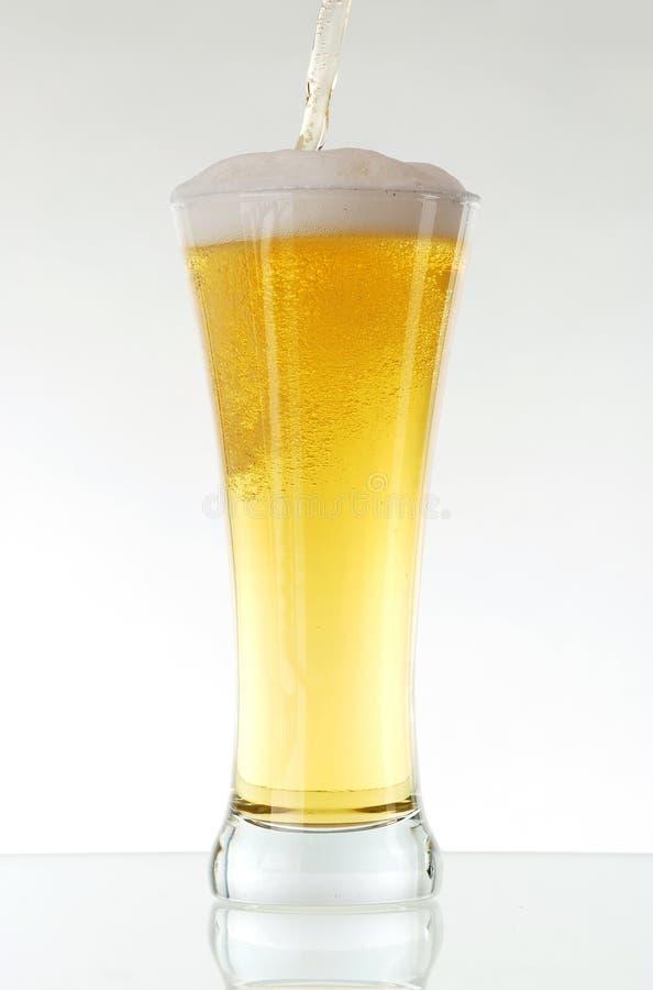 Download Glass of beer stock image. Image of golden, gold, foam - 18558849