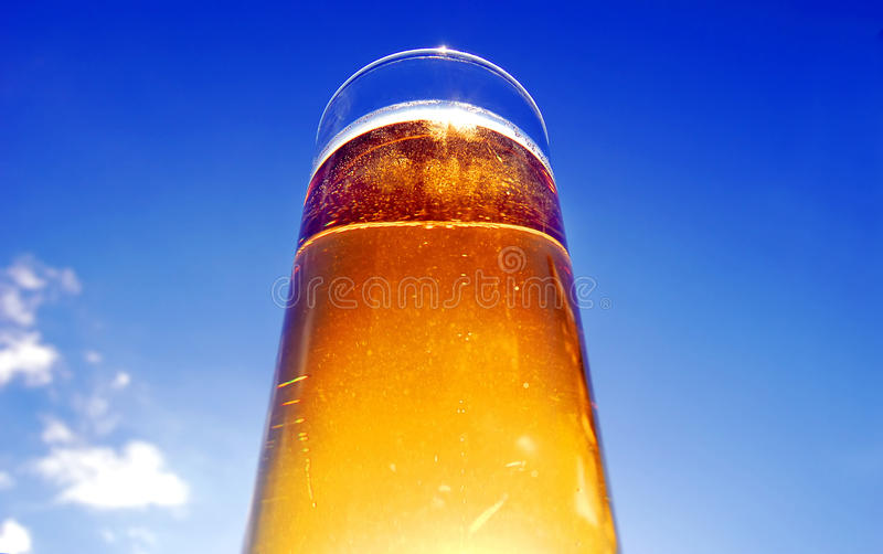 Download Glass beer stock photo. Image of cooling, glass, thirsty - 19550866