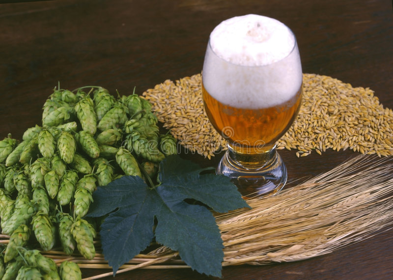 A glass of beer stock image