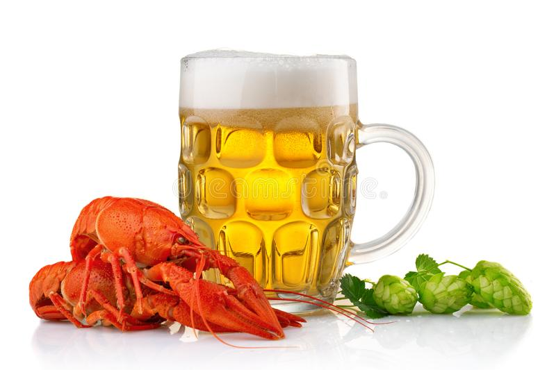Glass of beer with boiled crayfishes and green hop royalty free stock photography