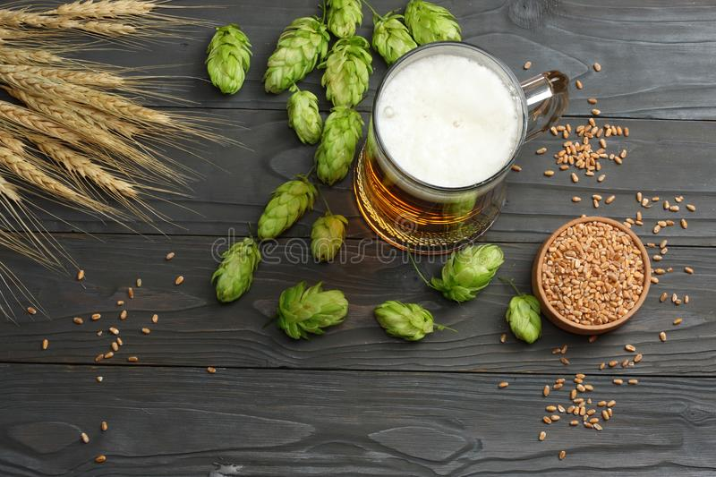 Glass beer with hop cones and wheat ears on dark wooden background. Beer brewery concept. Beer background. top view royalty free stock photos