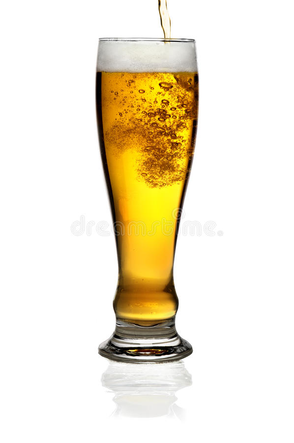 Glass of beer isolated stock image