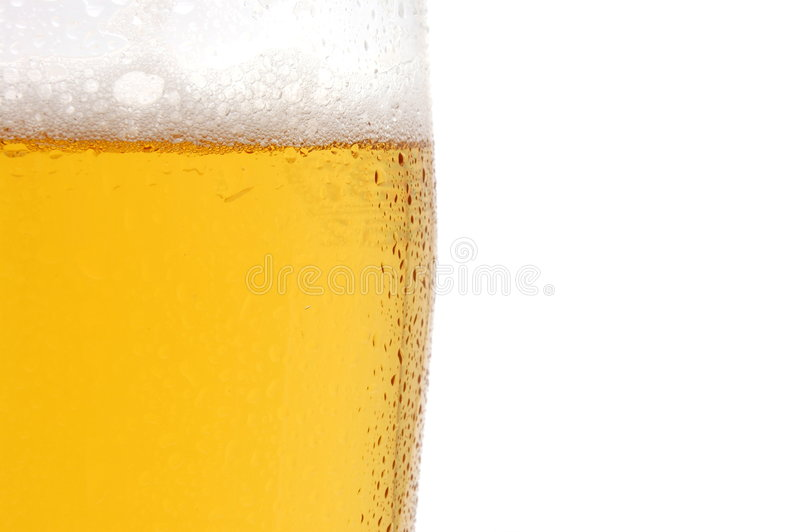 Glass of beer isolated on white background royalty free stock images