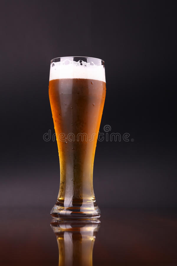 Glass of beer. Glass of light beer over a dark background stock photo