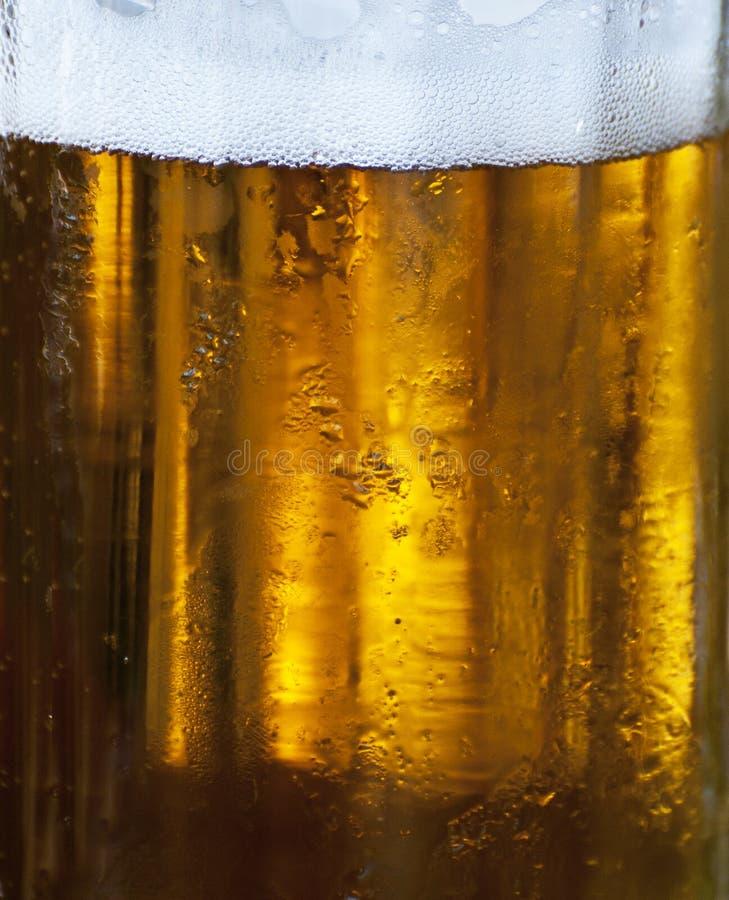 Glass of beer macro stock photography